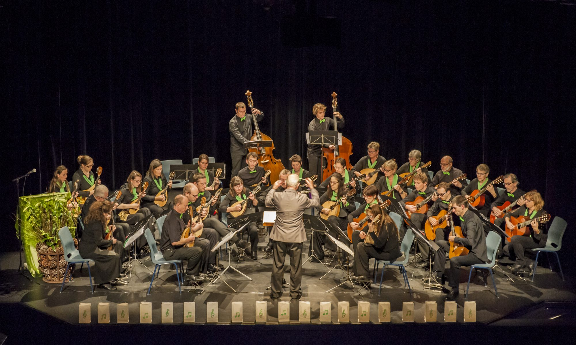 Brasschaats Mandoline-Orkest
